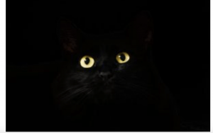 Quiet Eye theory: non-existing black cat in a dark room?